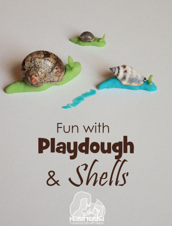 Fun-with-Playdough-anf-Shells1